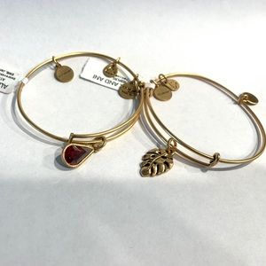 ALEX AND ANI bangle bundle